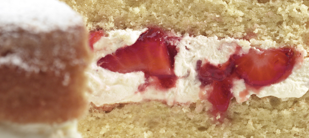 FB-Strawberries-Cream-Sponge-HR